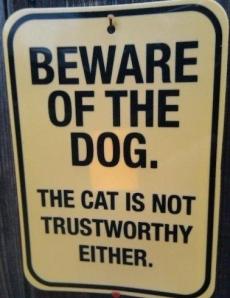 trustworthy credibility